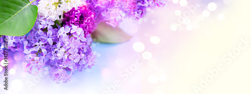 Spoed Foto op Canvas Lilac Lilac flowers bunch over blurred background