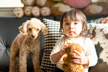 子供とペット(犬)