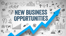 New Business Opportunities  / ...