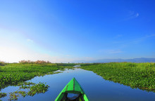Head Cam POV View On A Small Green Boat Going Through Lake Inle, Myanmar On A Hot Sunny Day With Crystal Blue Skies - Surrounded By Water Farm Vegetations Ground On The Lake
