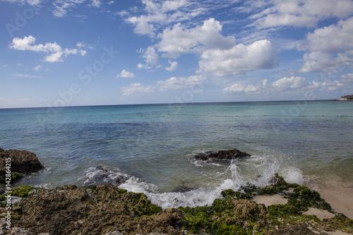 Spoed Foto op Canvas Noordzee Caribbean reef