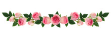 Pink Rose Flowers And Buds Line Arrangement