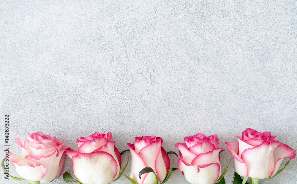 Pink and white roses on concrete background with copy space for text. Floral card, floral background, design mock up for women's day, mother's day