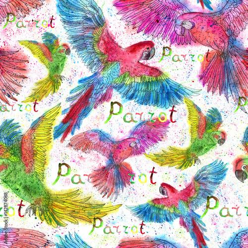 bezszwowy-tlo-z-papugami-i-musniecie-opuszcza-na-bielu