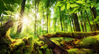Green forest scenery with the sun casting beautiful rays through the foliage, mossy lumber in the foreground