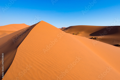 Foto  Scenic ridges of sand dunes in Sossusvlei, Namib Naukluft National Park, best tourist and travel attraction in Namibia