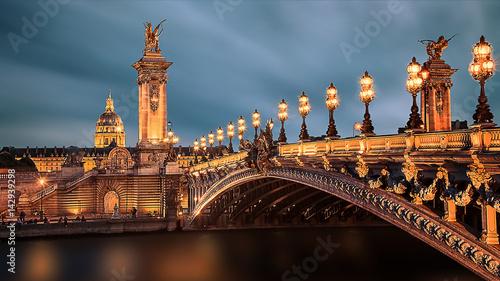 Foto auf Gartenposter Bridges Alexandre III bridge in Paris