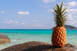 Pineapple fruit on sand against turquoise water. Similan Islands Thailand. Tropical summer vacation concept
