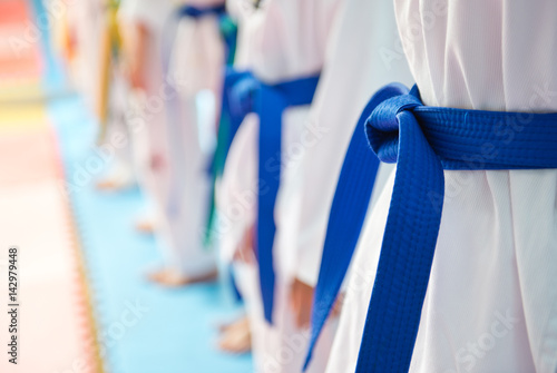 Obrazy Taekwondo   people-in-martial-arts-training-exercising-taekwondo