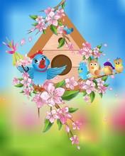 Wiosenny Koncert Ptaków