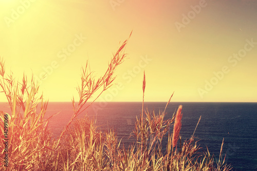 Tuinposter Zwavel geel Silhouette of two palms on sunset background