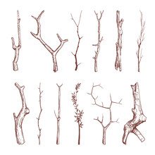 Hand Drawn Wood Twigs, Wooden ...