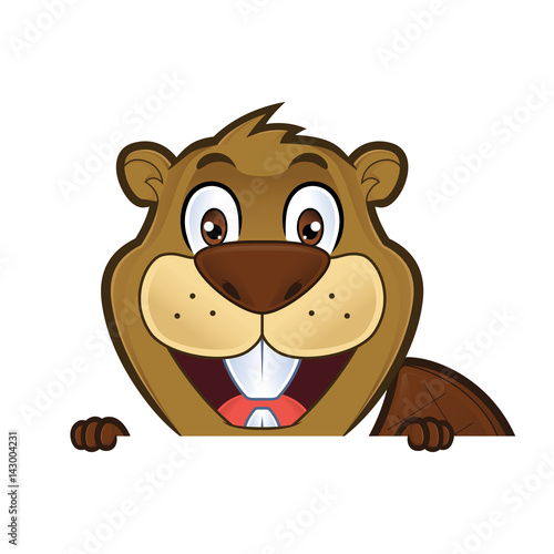Beaver holding and looking over a blank sign board - Buy