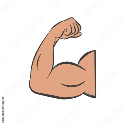 Fotografía Biceps vector. Isolated.