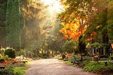 Herbstliche Szene Am Waldfried...