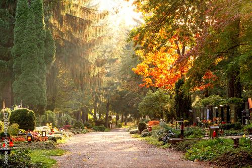 Tuinposter Begraafplaats Herbstliche Szene am Waldfriedhof