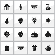 Set Of 16 Editable Fruits Icons. Includes Symbols Such As Maize, Garlic, Cantaloupe And More. Can Be Used For Web, Mobile, UI And Infographic Design.