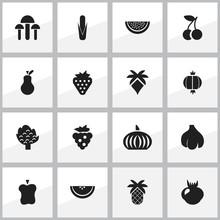 Set Of 16 Editable Fruits Icon...