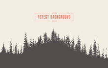 Pine Forest Background Vector ...
