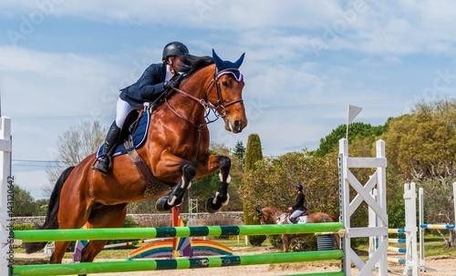 Garden Poster Horseback riding Equitation, saut d'obstacles, compétition.
