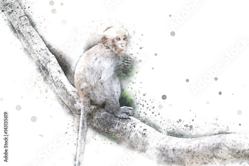 Photo  Abstract Monkey on watercolor background, Watercolor painting, Monkey