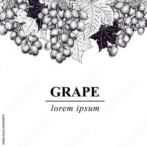 vector grape illustration. Can be use for background, design, invitation, banner, packaging. Retro hand drawn illustration Fototapete