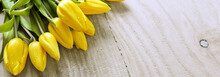 Yellow Tulip Bouquet Isolated .