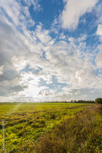 Staande foto Bleke violet Green autumn fields with country road. Massive stormy clouds. Nature landscape.