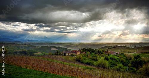 Staande foto Bleke violet Vineyards of Alba, Langhe and Roero