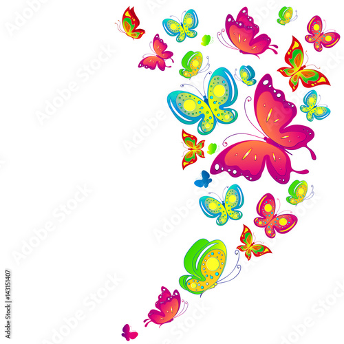 Poster Vogels, bijen beautiful color butterflies,set, isolated on a white