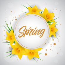 Spring Lettering In Frame With...