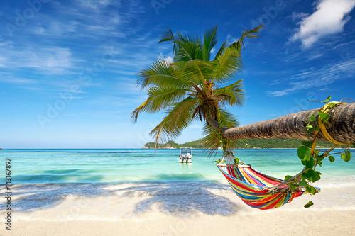 Obraz na plátně Urlaub am Strand mit Hängematte