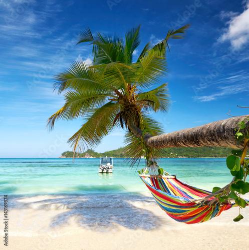 Entspannen am Strand, Hängematte