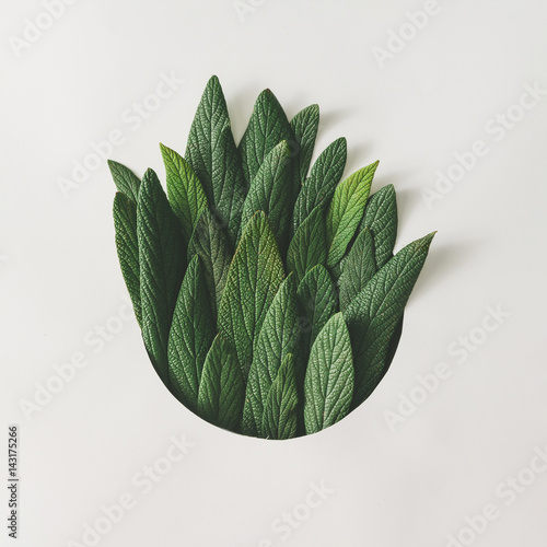 Leinwanddruck Bild - Zamurovic : Creative minimal arrangement of green leaves. Nature concept. Flat lay.