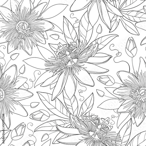 Fototapeta Vector seamless pattern with outline tropical Passiflora or Passion flowers, bud and leaves on the white background. Floral background in contour style for exotic summer design and coloring book. obraz na płótnie