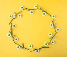Wreath Round Frame Made Of Willow Branches And Camomile Flowers On Yellow Spring Background. Easter, Summer, Minimal Concept. Flat Lay, Top View. Flowers Composition