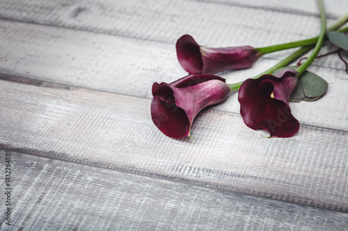 Fotografie, Obraz  Three violet callas lie on a wooden table, space for text
