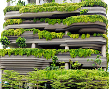 Green Parking In Modern City O...