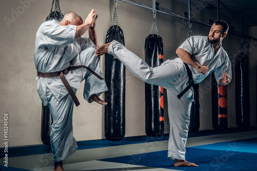 Fotografie, Obraz  Two judo wrestlers showing their technical skills.
