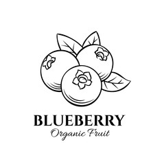 Hand Drawn Blueberry Icon.