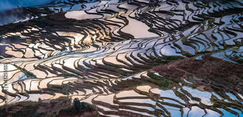Foto auf Gartenposter Reisfelder Colorful Rice Terrace in Yuanyang.