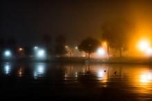 Foggy MacArthur Park