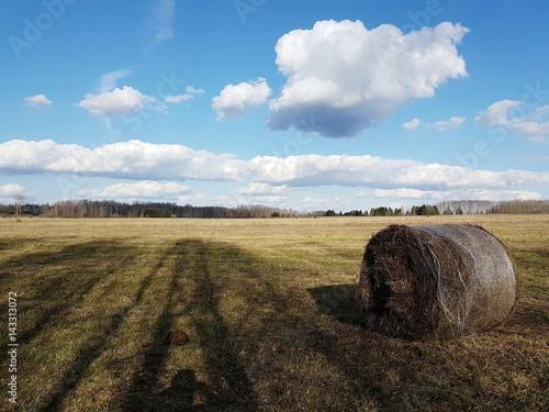 Fotografia  Równina