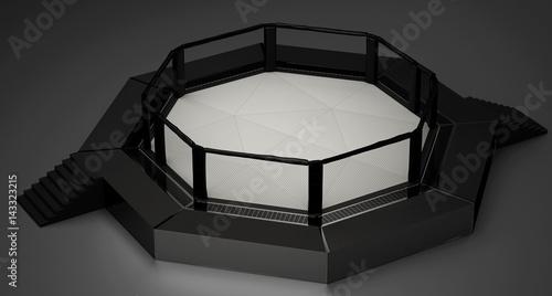 Oktagon UFC Bellator Ring MMA pugliato arti marziali miste Wallpaper Mural