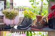 Upcycling und Urban Gardening - gefunden in Berlin