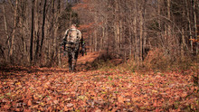Walk Into The Woods. Archery H...