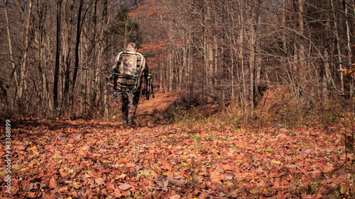 Walk into the Woods. Archery hunting big woods. Hunter walking through the woods with gear