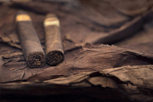 Group Of Cigars On Tobacco Lea...