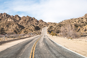 Fototapeta Endless road In Joshua Tree California