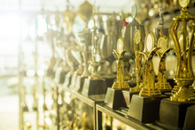 Trophy Awards For Champion People